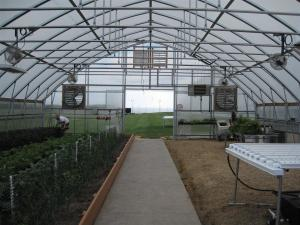 Concrete path with radiant heating system