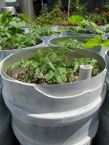 Sub irrigation in upcycled grow container
