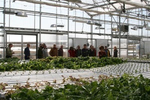 Hydroponic workshop participants touring the greenhouse
