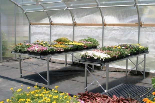 Greenhouse Benches 3