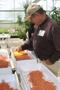 Examining the seed in the Fodder-Pro Feed System