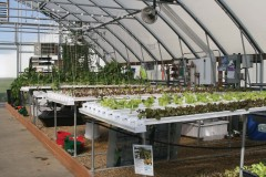 Technology Center hydroponics setup
