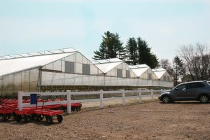 Commercial Greenhouse Ventilation