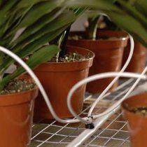 Dripper irrigation system