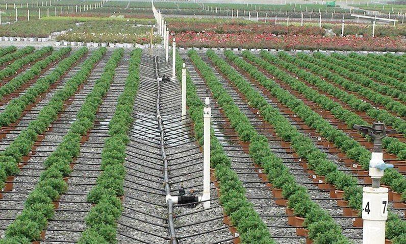 drip irrigation system - Irrigation Systems