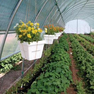 Premium Round Style High Tunnel with Shade Cloth