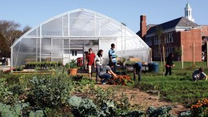 Greenhouse at School