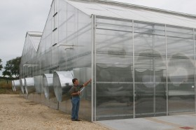 Inspect your greenhouse thoroughly