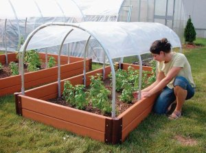 Mini Cold Frame