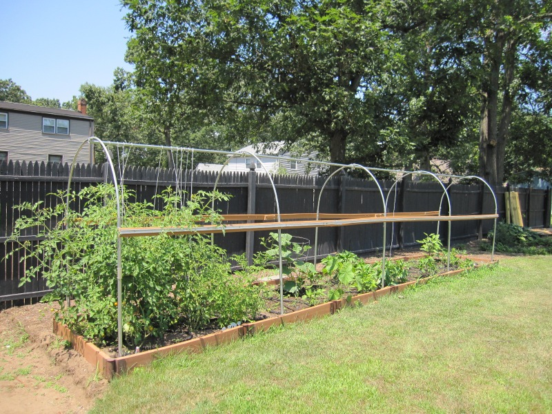 Finished hoop house