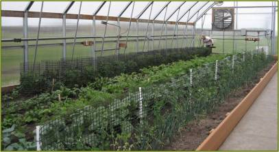 Raised bed greenhouse plans free Plans DIY How to Make ... on best greenhouse plans, cold frame greenhouse plans, solar greenhouse plans, greenhouse layout plans, gothic arch greenhouse plans, dome greenhouse plans, diy greenhouse plans, pvc greenhouse plans, back yard greenhouse plans, mini greenhouse plans, printable greenhouse plans, stone greenhouse plans, small greenhouse plans, in ground greenhouse plans, home greenhouse plans, gothic style greenhouse plans, vintage greenhouse plans, outdoor greenhouse plans, cheap greenhouse plans, garden greenhouse plans,