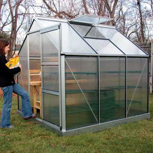 Backyard Beginner Greenhouse