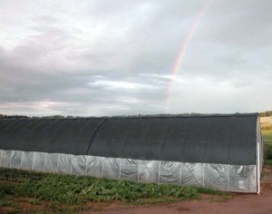 High tunnel and rainbow