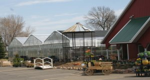 Mustard Seed Landscaping and Garden Center