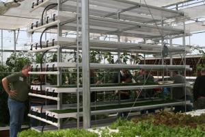 Hydroponic fodder system