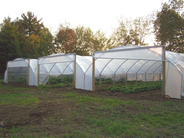 Longer Growing Season with ClearSpan High Tunnels