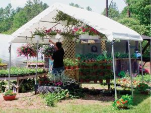 Growers Supply Commercial Canopy