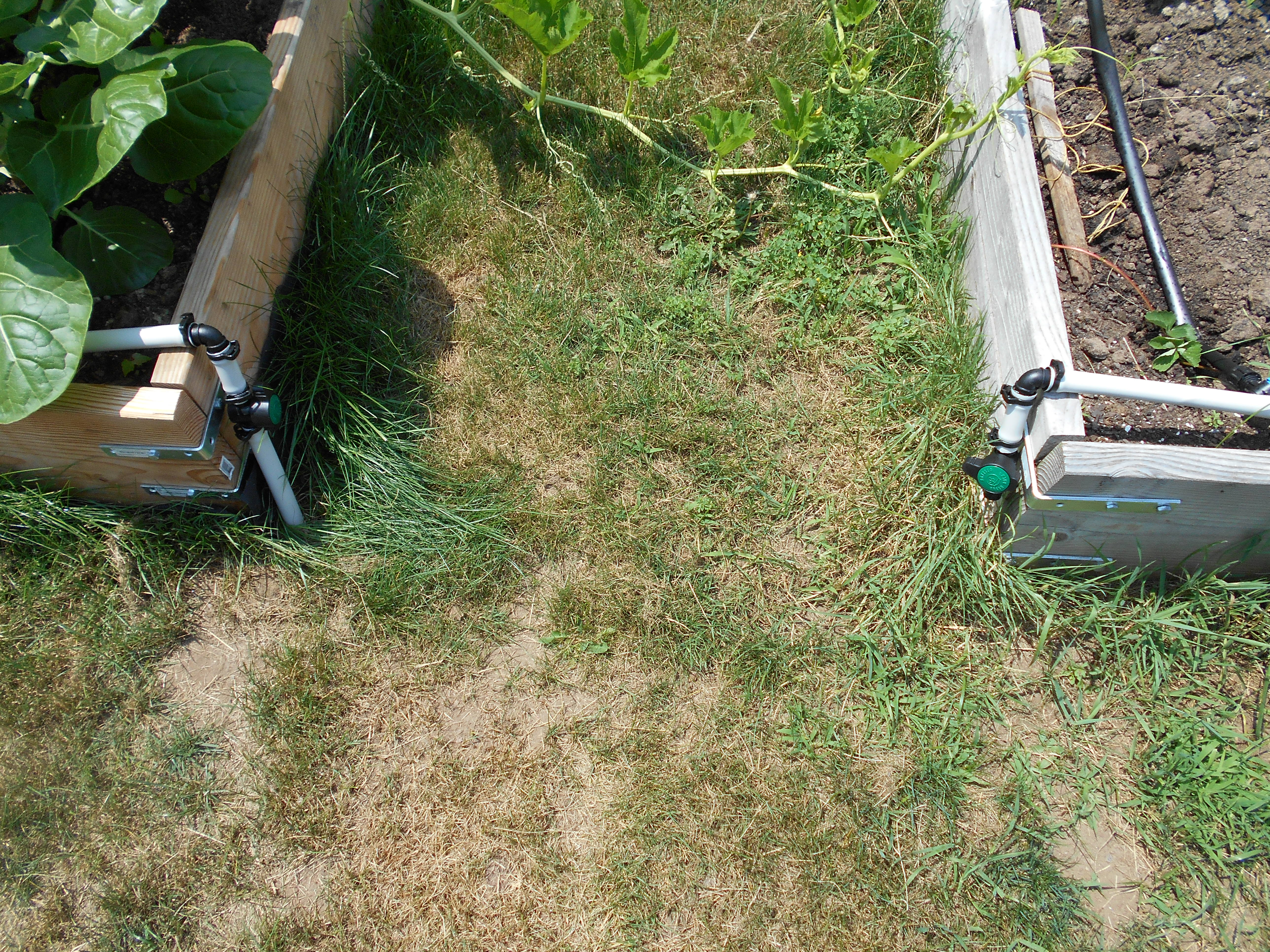 Do It Yourself Drip Irrigation Systems