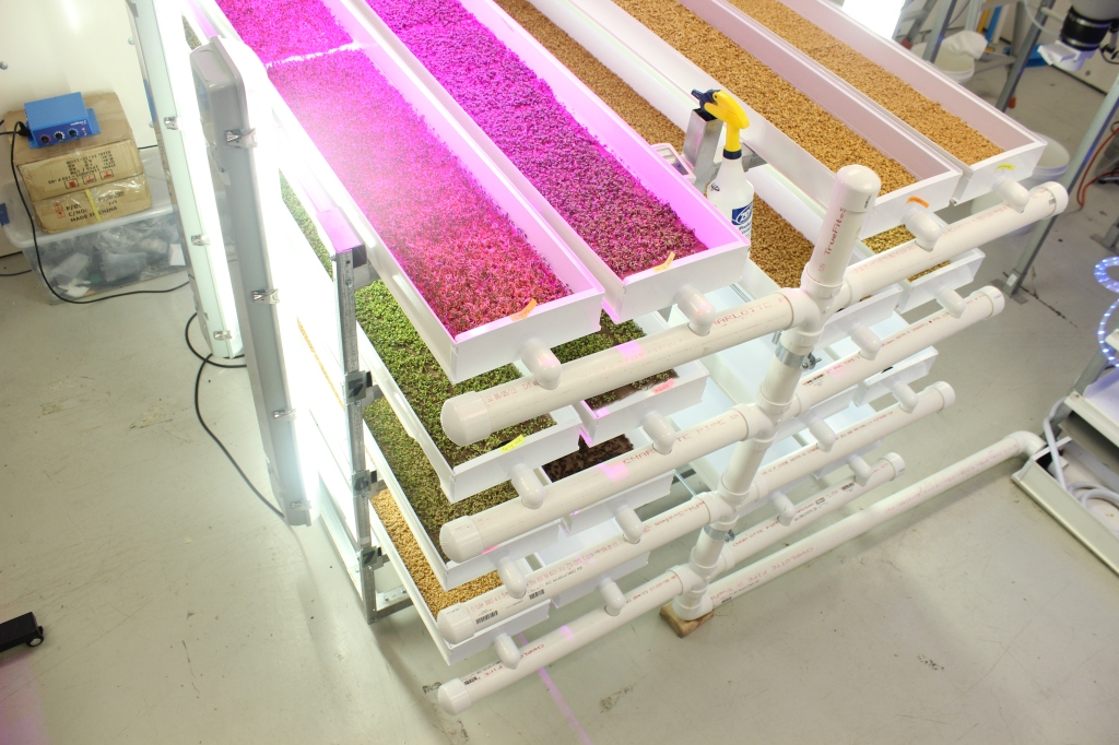 Growers Supply Microgreens
