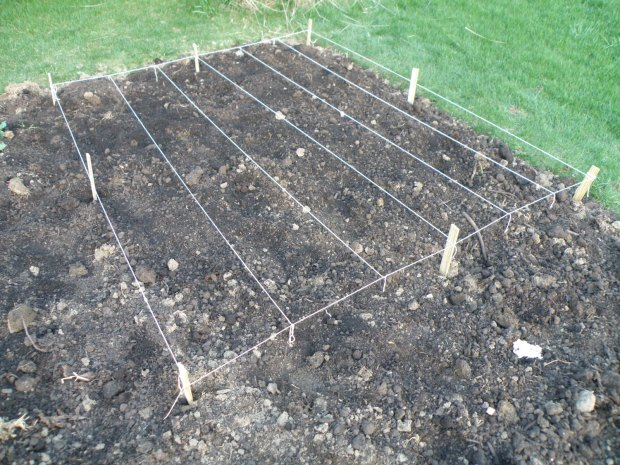 Small scale finished string grid in garden