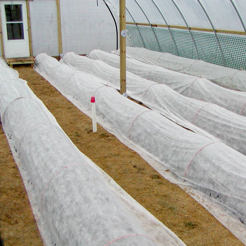 Gain peace of mind with frost protection | Growers Supply