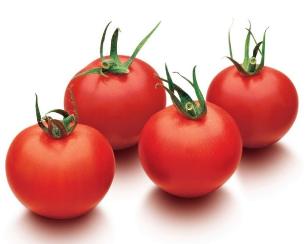 Favorita Tomatoes