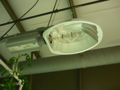 Metal Halide Lighting