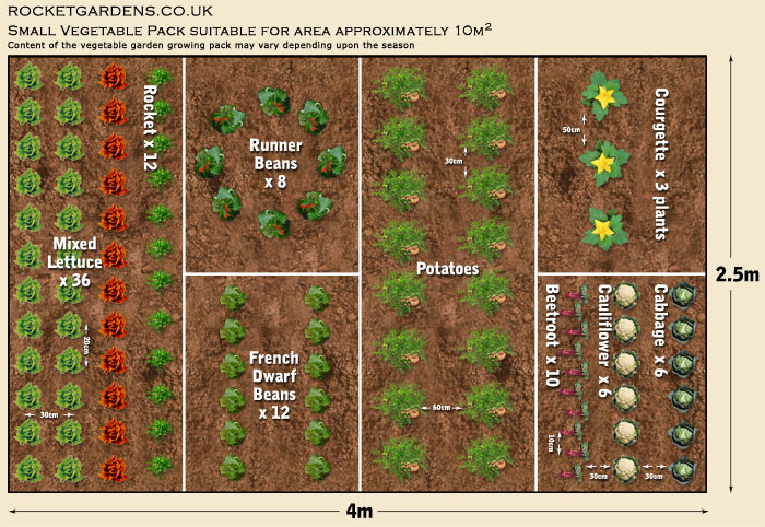 A guide to seed selection tips tricks and helpful for Garden planning guide