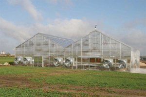 Growers Supply Greenhouses