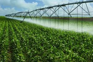 Crop watering